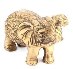 Brass Elephant Trunk Upwards