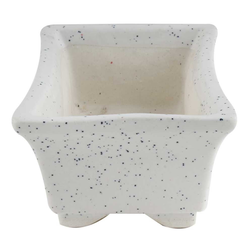 Rectangular White Planter Pot With Small White Dots